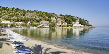 Strand vid hotell Los Geranios i Puerto de Sóller på Mallorca.