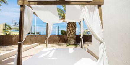 Los Olivos Beach Resort i Playa de las Americas.