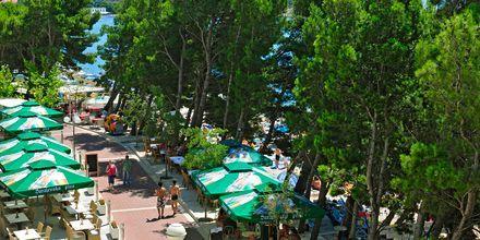 Hotell Lucija på Makarska rivieran, Kroatien.