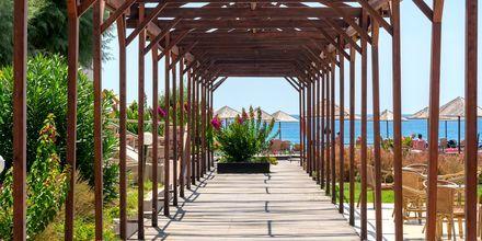 Hotell Lutania Beach i Kolymbia på Rhodos, Grekland.