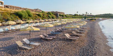 Stranden vid hotell Lutania Beach i Kolymbia på Rhodos, Grekland.