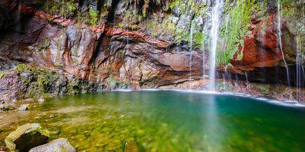 Vattenfall längs med en vandringsled på Madeira i Portugal.