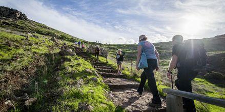Oändliga vandringsmöjligheter på Madeira i Portugal.