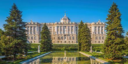 Madrids kungliga slott heter Palacio Real de Madrid och är ett av världens mest utsmyckade slott.
