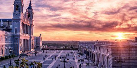 En av de vackraste sevärdheterna i Madrid är Catedral de la Almudena, är en romersk-katolsk katedral.