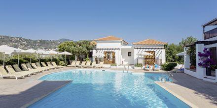 Pool på hotell Hotell Maistros på Skopelos.