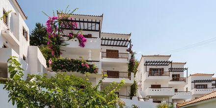 Hotell Maistros på Skopelos.