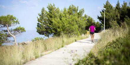 Börja dagarna med avkopplande promenader. Makarska rivieran.