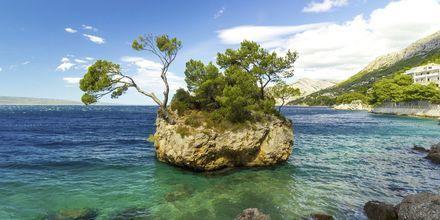 Brela är en av de mest populära badorterna på Makarska rivieran, Kroatien.