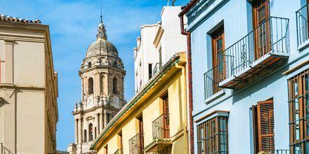 Gamla stan i Malaga, Spanien.