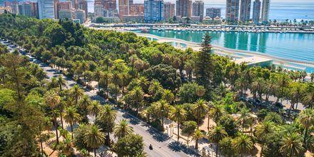 Hamnområdet i Malaga, Spanien.