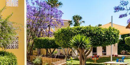 Hotell Malama Beach Holiday Village i Fig Tree Bay på Cypern.