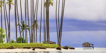 Maiga Island, strax utanför staden Semporna, är ett riktigt tropiskt paradis i Malaysia.