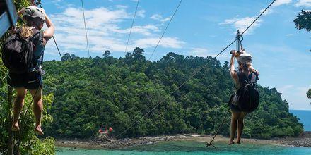 I Malaysia finns det gott om upplevelser och aktiviteter, som att åka zipline.