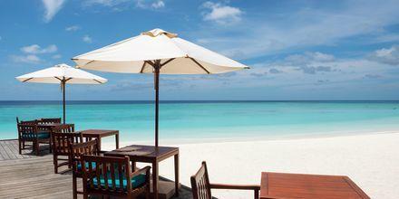 En paus från solen över en lunch på en strand i Maldiverna.