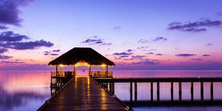 Räkna med vackra solnedgångar under din semester i Maldiverna.
