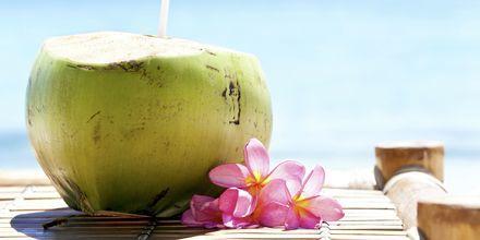 På Maldiverna växer kokosnöten fritt.