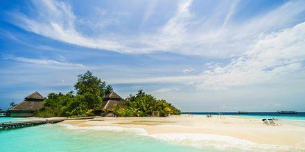 Maldiverna är ett perfekt resmål för dig som älskar sol, bad och vita stränder.