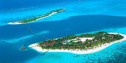På Maldiverna har ofta en hotell eller en resort en hel ö till sitt förfogande.
