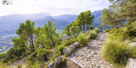 Många vandrare söker sig till Tramuntanabergen på västra Mallorca.