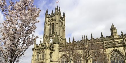 Katedralen i Manchester.