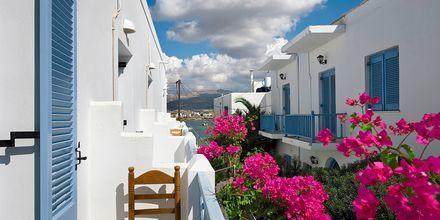 Dubbelrum på hotell Mantalena på Antiparos i Grekland.