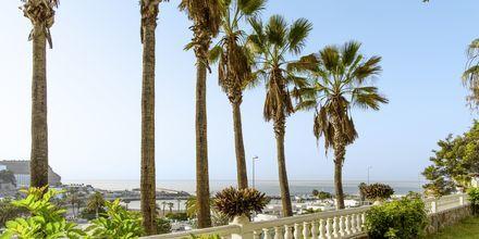 Hotell Maracaibo i Puerto Rico, Gran Canaria.