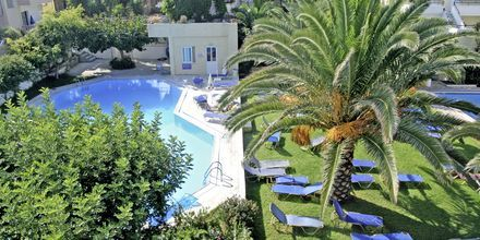 Poolområdet på hotell Marakis i Platanias på Kreta, Grekland