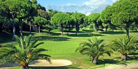 I Marbellas närområde kryllar det av golfbanor.