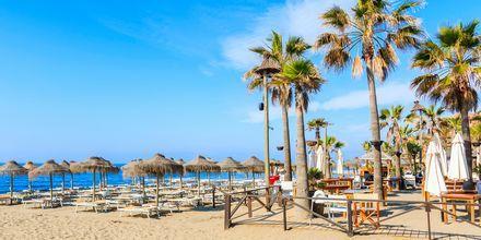 Strand i Marbella, Spanien.