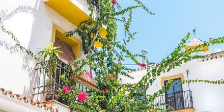 Marbella i Spanien.