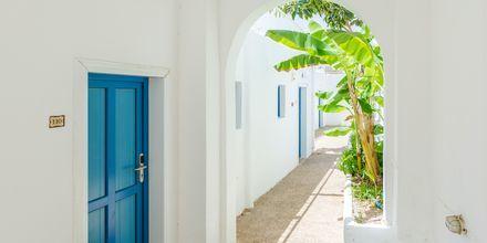 Hotell Marcos Beach på Ios i Grekland.