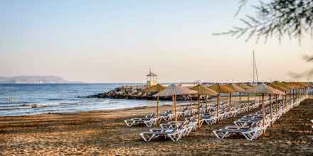Stranden vid hotell Marina Beach i Gouves, Kreta.