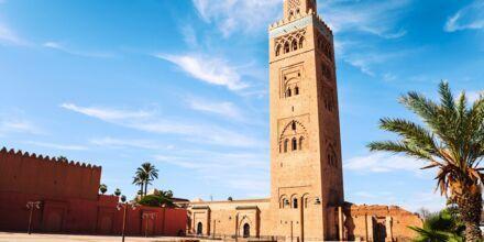 Moské i Marrakech, Marocko.