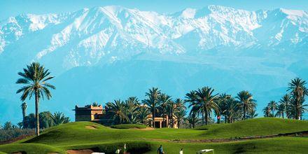 Golfbana i Marrakech, Marocko.