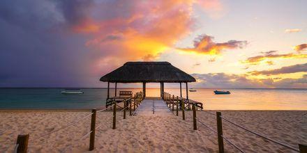 Solnedgång på underbara stranden Flic en flac, Mauritius.