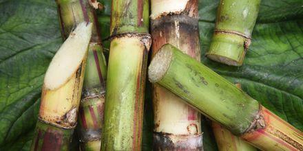 Sockerrör, en lokal handelsvara från Mauritius.