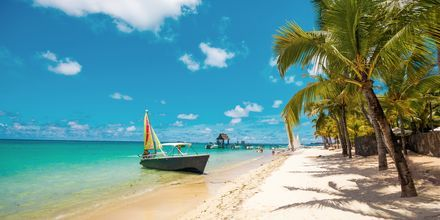 Stranden Trou aux biches, Mauritius.