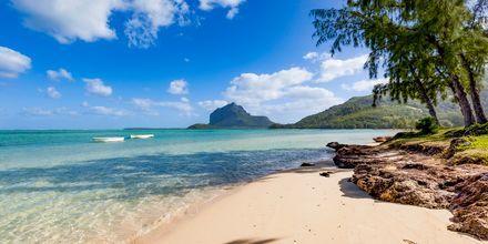 Stranden Le Morne, Mauritius.