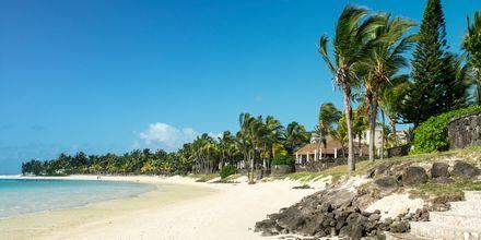 Stranden Belle Mare, Mauritius.