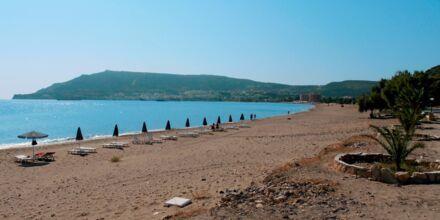 Stranden vid hotell Mediterranean Beach på Karpathos.