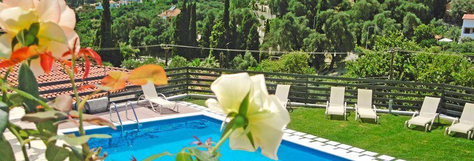 Poolen på hotell Mediterraneo Resort i Parga, Grekland.