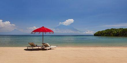 Strand vid hotell Melia Bali Villas & Spa i Nusa Dua, Bali.