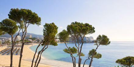 Utsikt mot havet från hotell Melia Calvia Beach, Mallorca.
