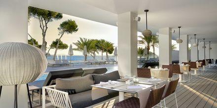 Bufférestaurangen på hotell Melia Calvia Beach, Mallorca.