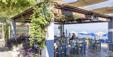 Taverna på hotell Melina Beach i Platanias på Kreta, Grekland.