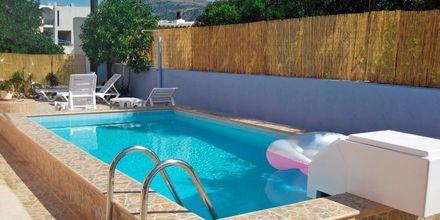 Poolen på hotell Meltemi på Karpathos Grekland.