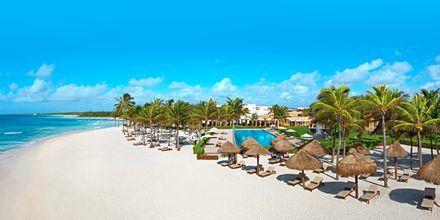 Strand vid Dreams Tulum Resort & Spa på Riviera Maya.