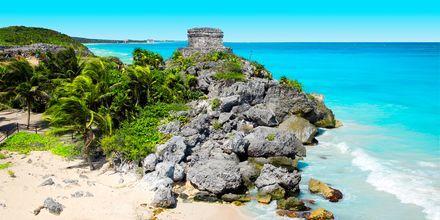 Ruinområdet Tulum på Riviera Maya i Mexiko.