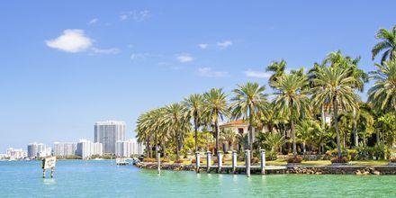 Biscayne Bay i Florida.